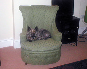 My special chair